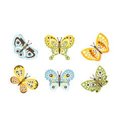 beautiful butterflies flying insects decoration vector image