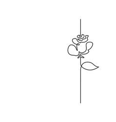 continuous line drawing beautiful flower vector image