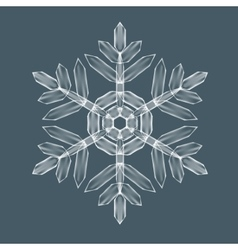Decorative Snow flake vector image