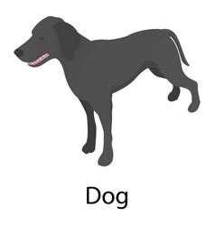 dog icon isometric style vector image