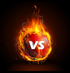 fiery ball for cricket championship with vs versus vector image