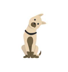 happy cartoon puppy sitting portrait cute vector image