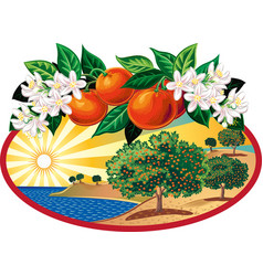 oval frame with citrus grove vector image