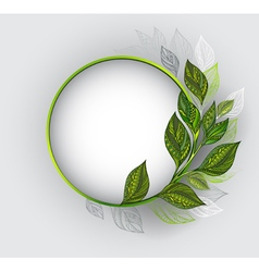 Round Banner with Patterned Tea Leaves vector
