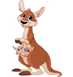 Kangaroo mom and babies vector image