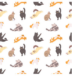 Seamless pattern with purebred cats sleeping vector