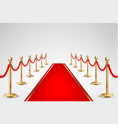 realistic red event carpet and gold vector image