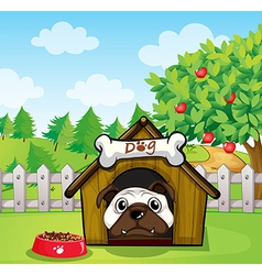 A dog inside a dog house vector
