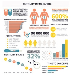 bainfographic vector image