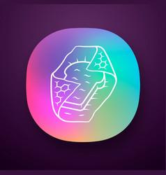 Beeswax food wrap app icon vector
