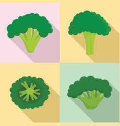 green broccoli icon set flat style vector image