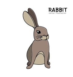 Rabbit isolated hand drawing vector