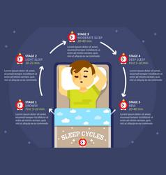 Sleep cycle infographics education diagram vector
