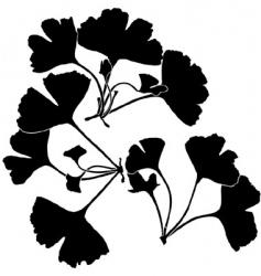 gingko balboa silhouettes vector image vector image