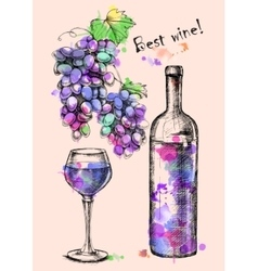 Card of sketch grapes wine bottle for design vector