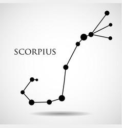 constellation scorpius zodiac sign vector image