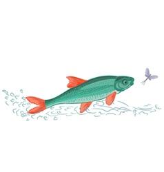 Fish-and-ephemera vector