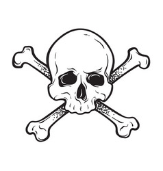 jolly roger human skull with crossbones isolated vector image