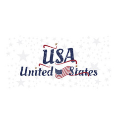 Usa lettering with flag vintage label badge with vector