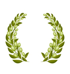 A Beautifu Olive Wreaths on White Background vector image