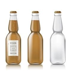 Sample of empty beer bottles vector image vector image