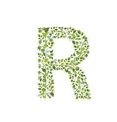 Spring green leaves eco letter R vector image