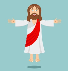 Jesus Christ Cheerful Son of God biblical vector image