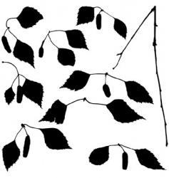 Birch set silhouettes vector