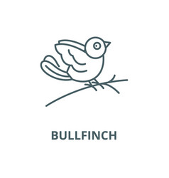bullfinch line icon linear concept vector image