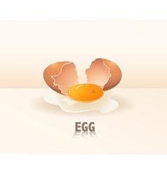 Egg yolk vector image