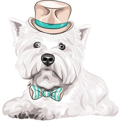 Hipster dog West Highland White Terrier vector