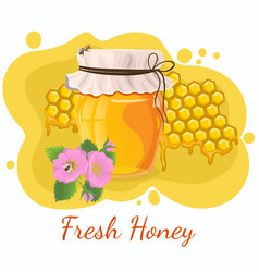 honey template for posters banners ads and other vector image