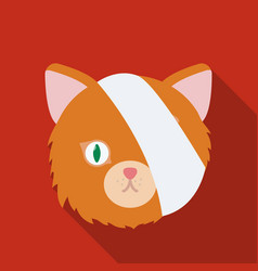 Sick cat with bandage on a head icon in flate vector