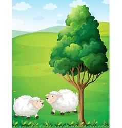 Two sheeps near tree vector