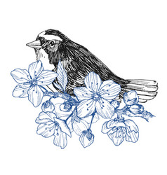 bird hand drawn in vintage style with flowers vector image