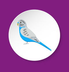 Budgerigar parrot icon in flat style vector