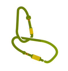 camping equipment carabiners on white background vector image