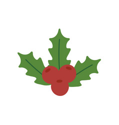 holly berry leaves chirstmas decoration icon vector image