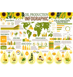 Oil infographics with sunflower olive rapeseed vector