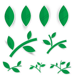 set of paper leaves on a white background vector image