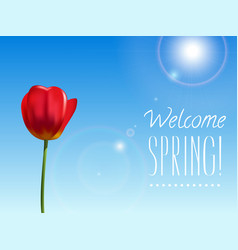 spring background with tulip vector image