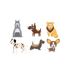 dogs of different breeds set cute pets domestic vector image