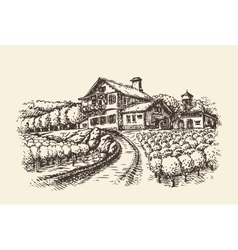 Farm landscape Hand-drawn vineyard or agriculture vector