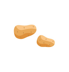 flat unpeeled potato icon vector image