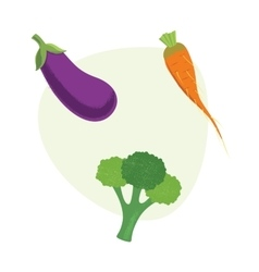 Fresh Vegetables carrots broccolieggplant vector