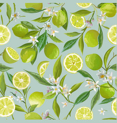 lime seamless pattern citrus fruit vector image