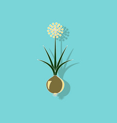 Paper sticker on background of allium vector