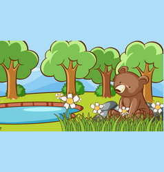 scene with cute bear in forest vector image