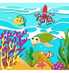 Sea animals swimming in ocean vector