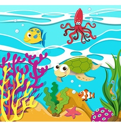 Sea animals swimming in the ocean vector